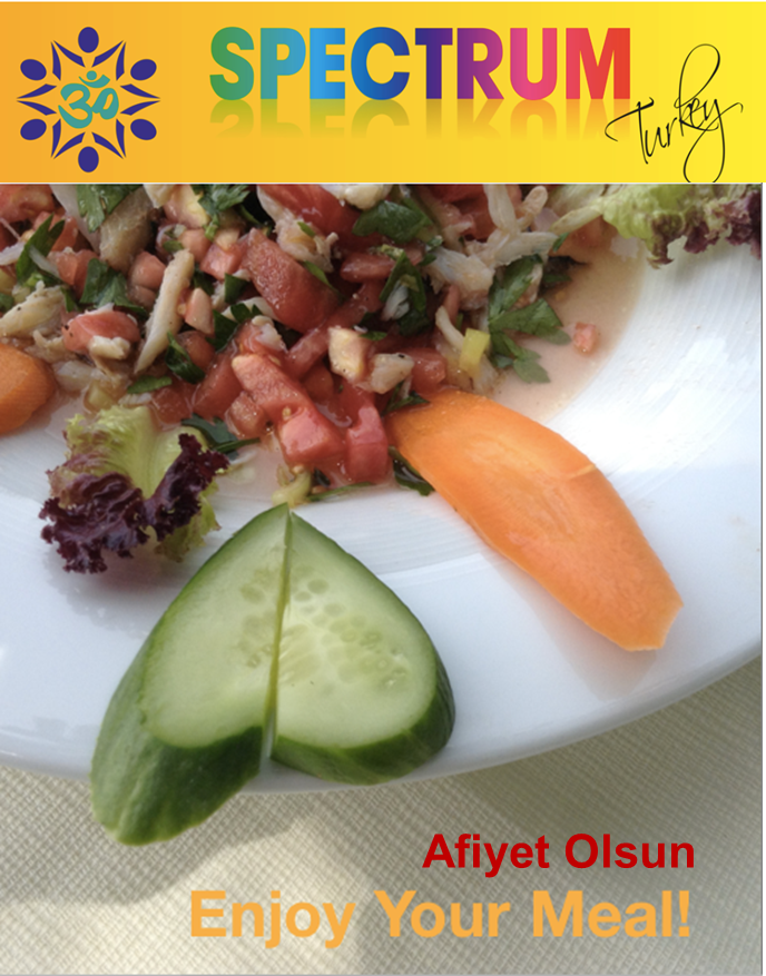 Spectrum turkey recipe book spectrum turkey to get a copy of this recipe book contact cuspectrumturkey makes a nice gift too forumfinder